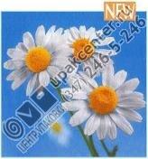 Приобрести оптом Салфетки 20 л., 2-х слойные, Bouquet Original «Ромашки на голубом»